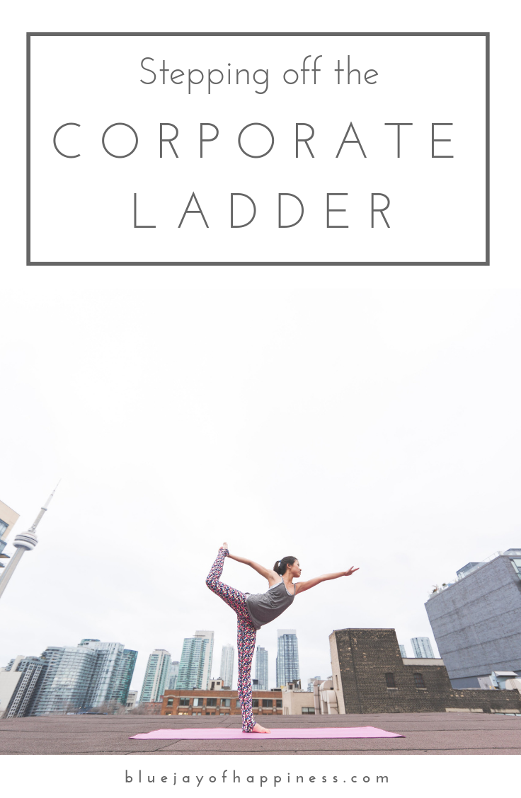 stepping off the corporate ladder