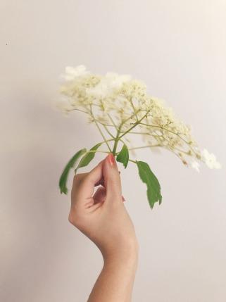 bloomandgrow-unexpected
