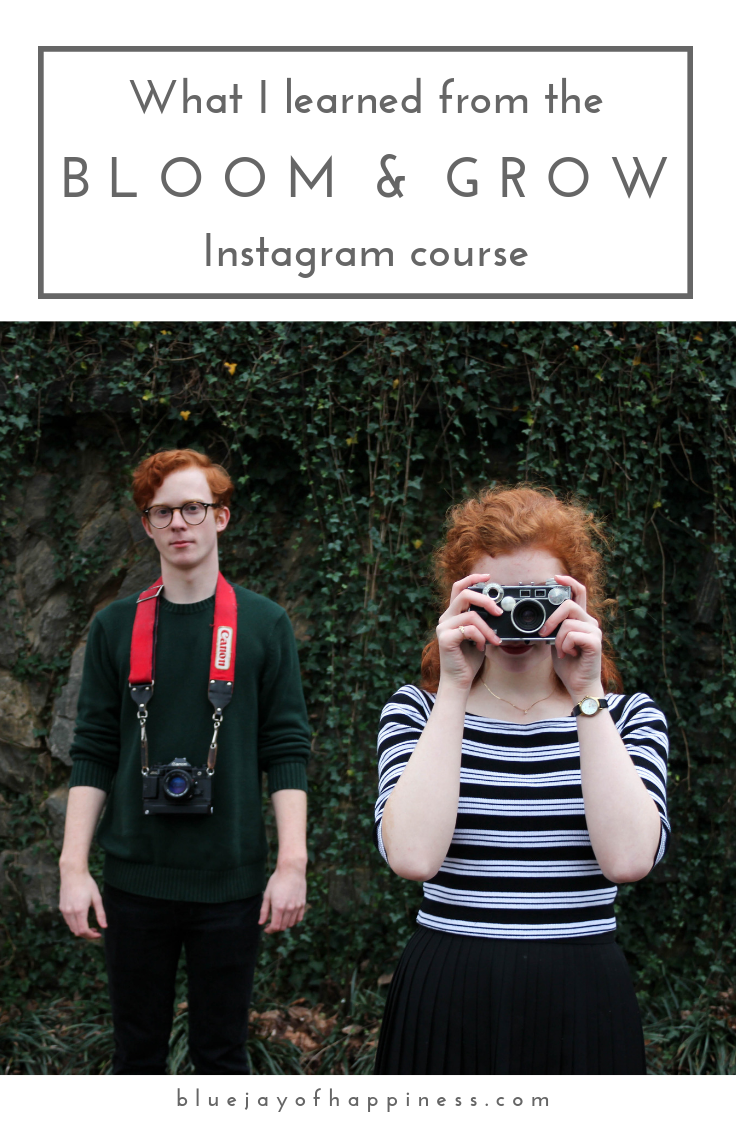 What I learned from the Bloom & Grow Instagram course