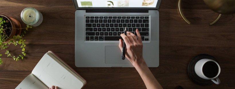 woman, computer, work, newsletter