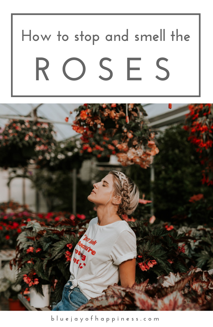 How to stop and smell the roses
