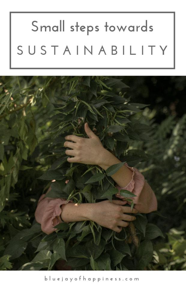Small steps towards sustainability