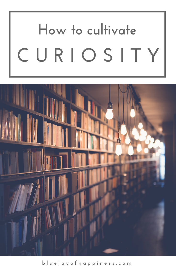 How to cultivate curiosity