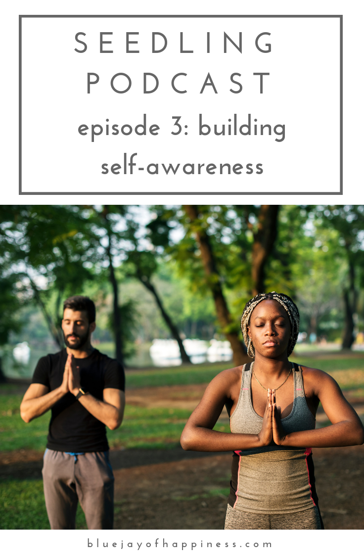 Seedling podcast episode 3 - building self-awareness